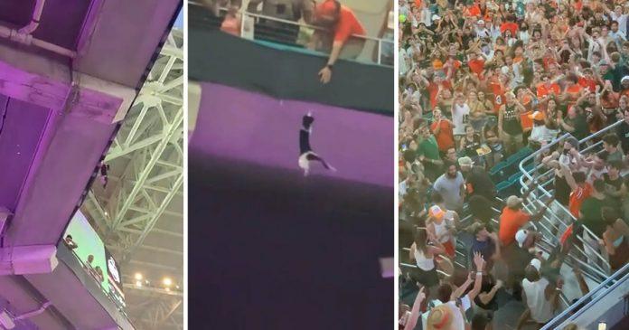 Gato es atrapado por los fanáticos después de caer del nivel superior del estadio