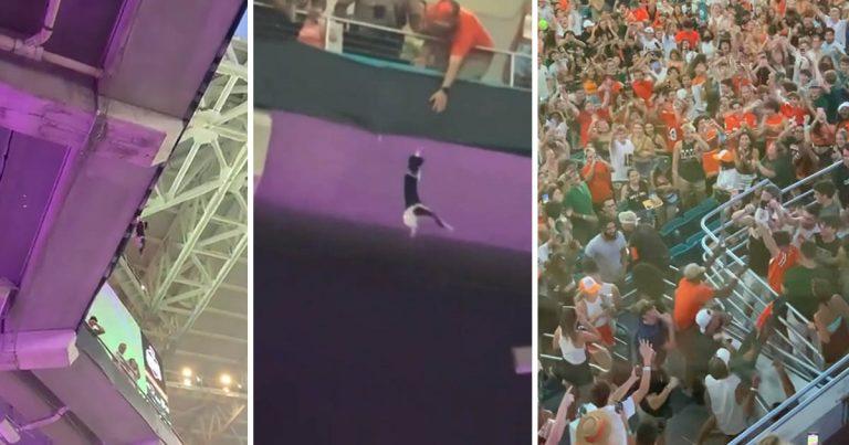 Fanáticos del fútbol atrapan a un gato después de caer del nivel superior del estadio