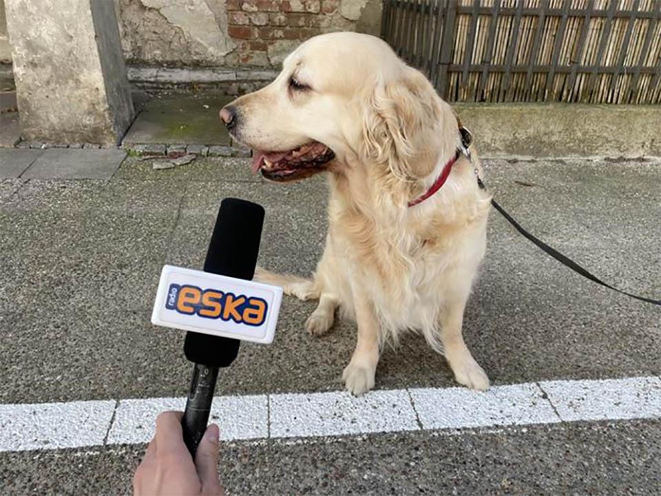 Milka entrevista