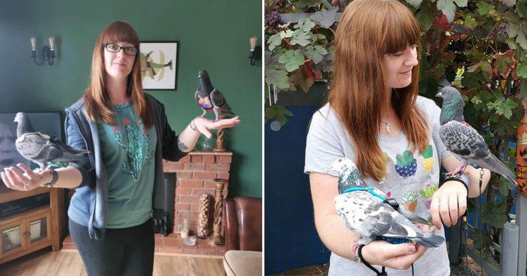 Mujer gasta 4.000 libras al año en sus palomas que tienen su propia habitación, armario y cochecito