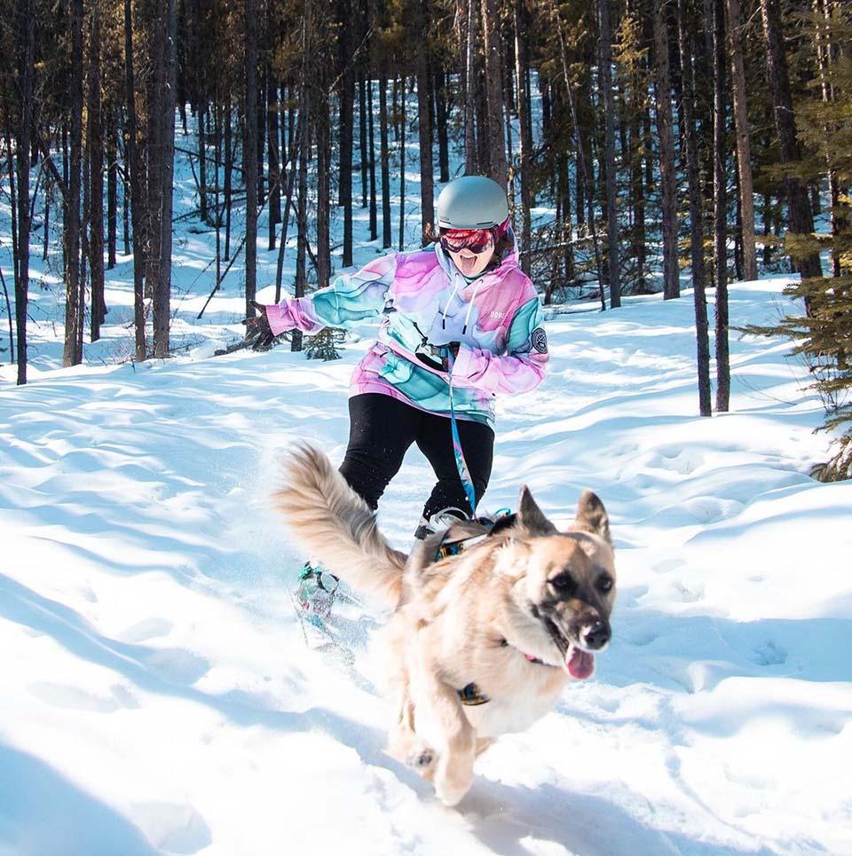 Perrita esquiadora y mamá