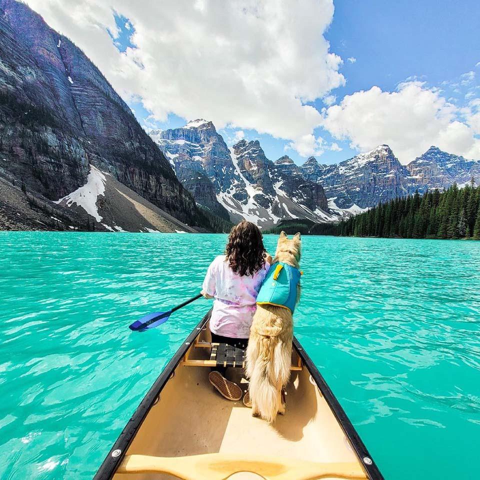 Perrita y su madre en canoa